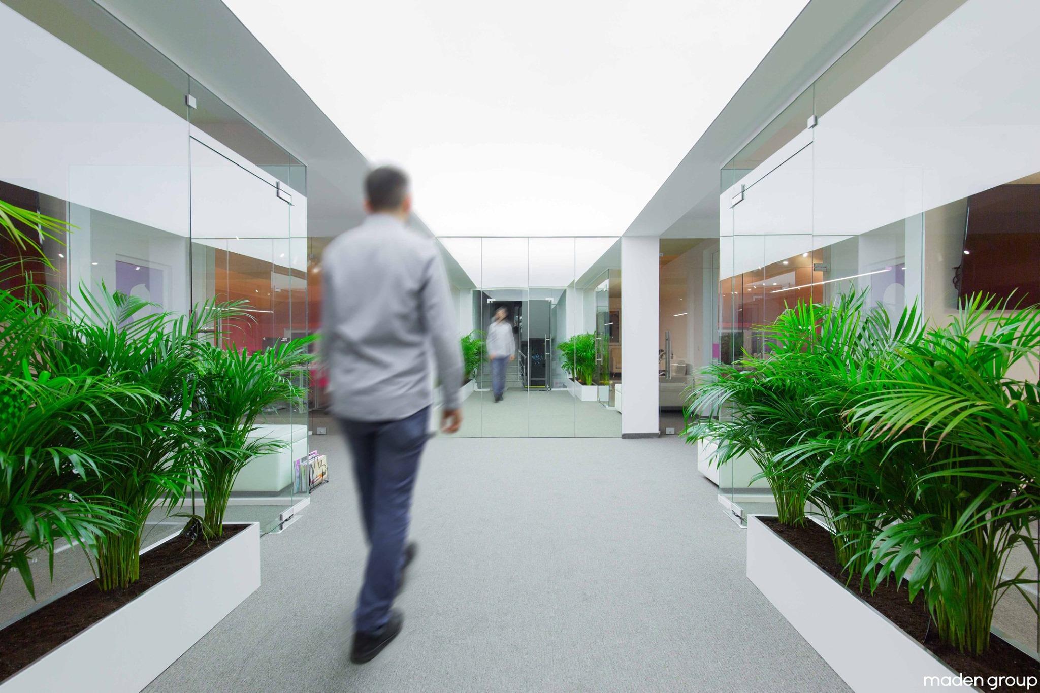 hallakate - zyret e reja